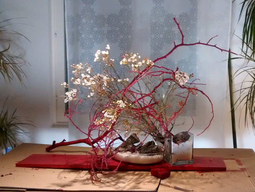 Red twigs and waxflowers
